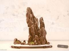 香港步兵旅在石岗营区举行盆景文化创意展