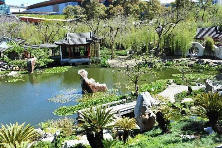 澳大利亚第二届世界盆景艺术创作大会