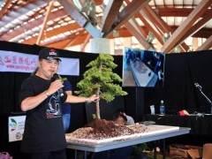 2018年 第二届世界盆景艺术创作大会