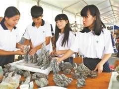 广州英西中学创作的山水工艺盆景