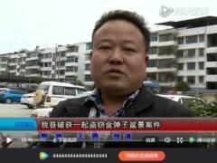 余庆县破获一起盗窃金弹子盆景案件