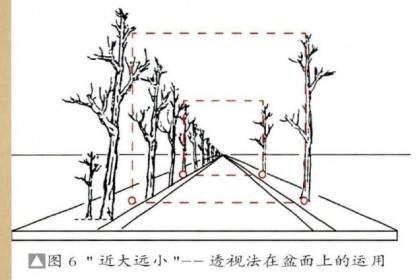 图解 丛林盆景布局的2个组合方法