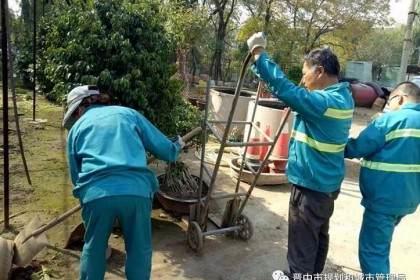 晋中市园林局开展花卉盆景越冬管理工作