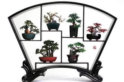 盆景几架提高你的装饰与这些手工制作的盆景站