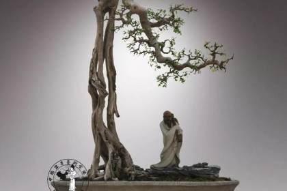岭南盆景的发展体现了岭南文化的固有特质