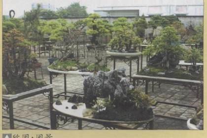 韩学年先生是岭南盆景创作大家 尤擅长山松