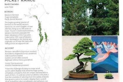 美国风景画作为盆景本土生态系统的艺术表现形式