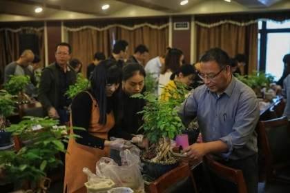 浙江供电公司举办了一场微盆景创作与养护讲座
