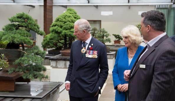 查尔斯王子参观澳大利亚国家盆景收藏馆