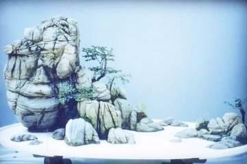 制作雪景盆景怎么立意与布置的方法