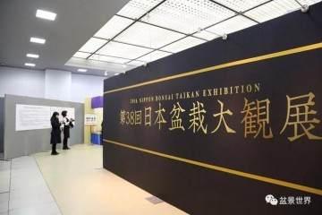 第38届日本盆景大观展在京都市劝业馆开幕