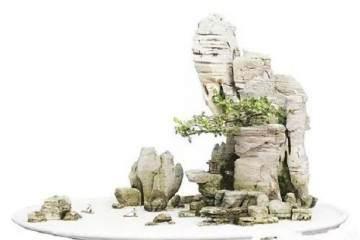 下面为大家一一讲解山石盆景制作过程