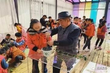 严家弯湾川派盆景民俗文化研学活动