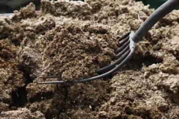 如何改良盆栽土壤的排水、通气性?