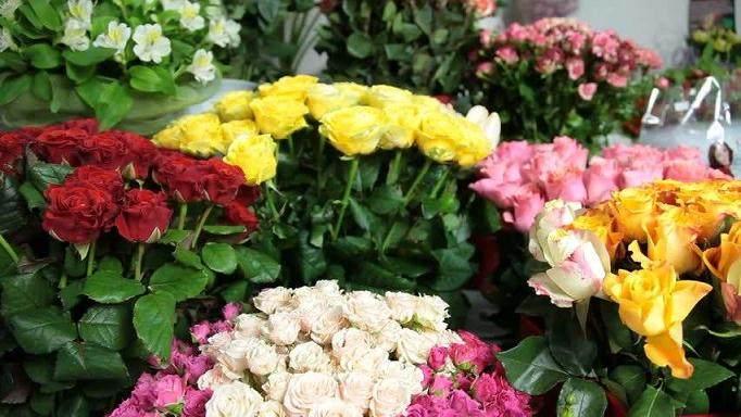 漳州市9个月花卉出口3558.1万美元 较去年同期略增