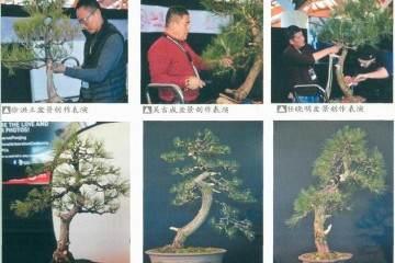 第二届世界盆景创作大会在澳大利亚盛大开幕