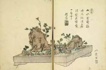 日本占景盆景属中国金陵派盆景