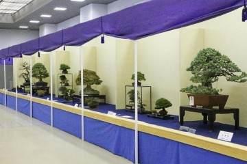 第38届日本盆景大观展览会将于2018年开幕