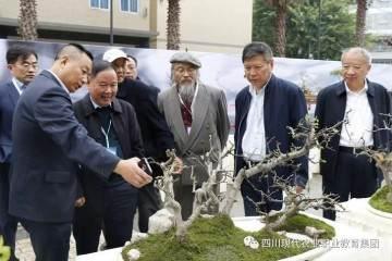 2018年10月举办四川省首届川派盆景技能大赛