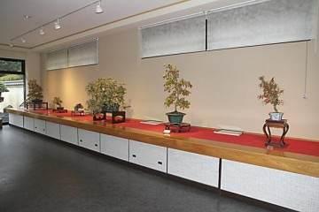 2014年秋季日本盆景巡回演出