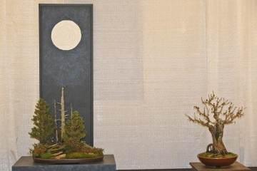 2014年 第二届成功的冬季剪影盆景博览会