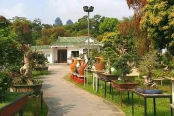 我们的大巴开始向着我们梦寐以求的鸿江盆景园驶去