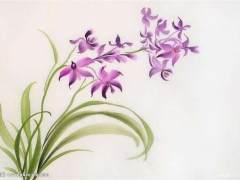 兰花上盆的过程与瓦盆上盆大同小异