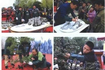 参加贵州遵义第一届交旅投杯金弹子盆景展