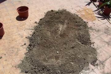 盆栽换盆后的花盆和旧土要怎么处理才能用?