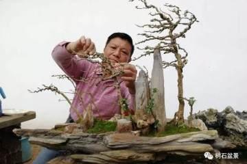 刘传刚博兰盆景系列之三——《风动式盆景篇》
