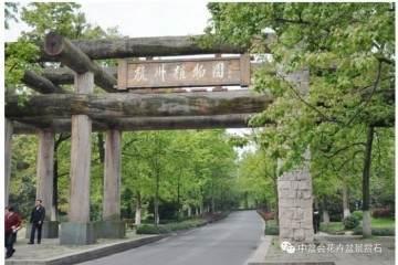 关于举办首届中国女盆景师作品展览的通知