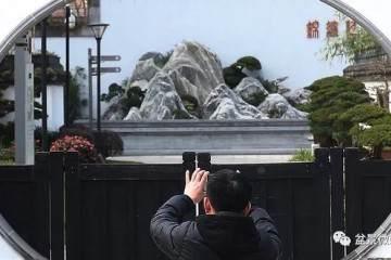 2019上海盆景赏石第一展在上海植物园举行
