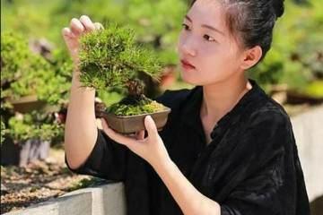 杭州万松草堂盆景基地老板 -- 于米