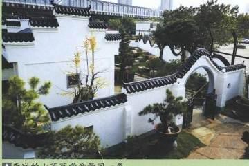 2018年 湖北花协盆景现场制作等交流活动