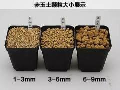 怎么用混合基质的土壤来养下山桩 5个方法 图片