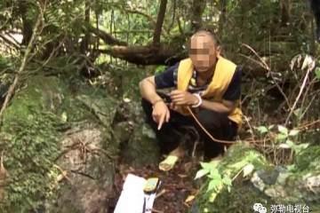 曲靖市黄杨盆景被盗 森林公安局成功抓获