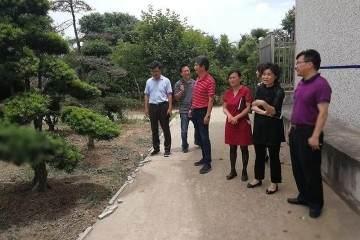 上海植物园领导赴港沿镇调研黄杨盆景资源