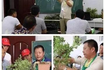 第二届上海国际青年盆景论坛