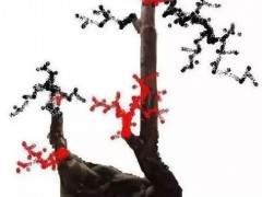 我制作的雀梅下山桩设计图 怎么样 图片