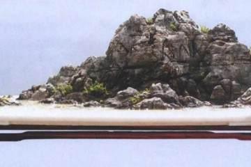 我制作山水盆景的制作后感