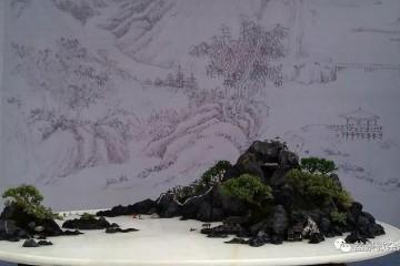 到了近代 山水盆景有了更大的发展 图片