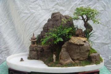 我制作山水盆景的感悟与体会