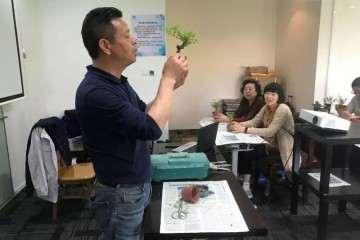 上海市盆景赏石协会会长 邬国荣