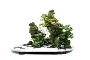 山石盆景怎么欣赏造型的方法 图片