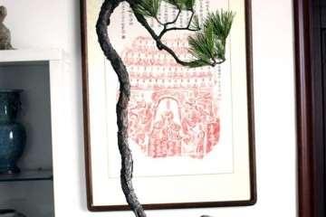 黄山松盆景怎么上盆栽种的方法 图片