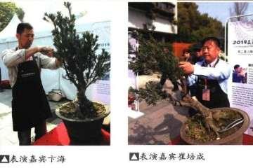 盆景论坛在上海植物大楼报告厅正式举行