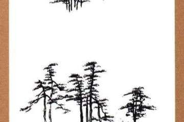 树木盆景的石头怎么布局的方法 图片