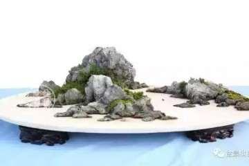 山水盆景也可以有很多种玩法 图片