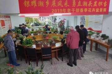海宁举办老干部花卉盆景展
