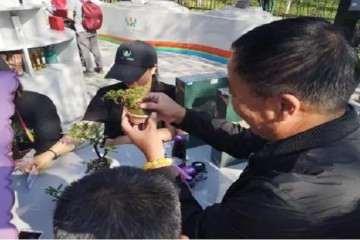 2019 微型盆景在北京世园展出 图片